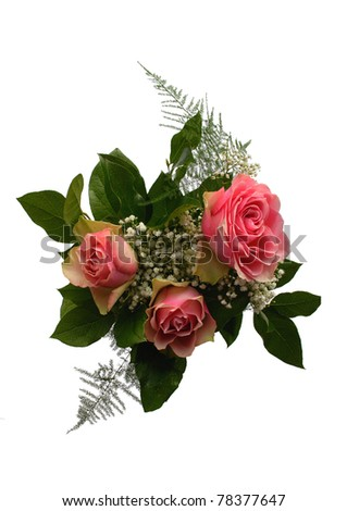rose bouquet isolated on the white background - stock photo