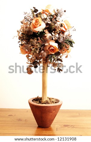 Rose bush standing on a wooden table - stock photo