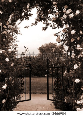 rose covered arbor leading through yard with concrete walkway - sepia tone - stock photo