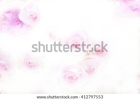 rose flower on mulberry paper texture for romantic background - stock photo