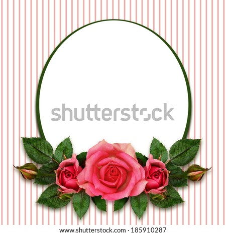 Rose flowers composition and oval frame on white background - stock photo
