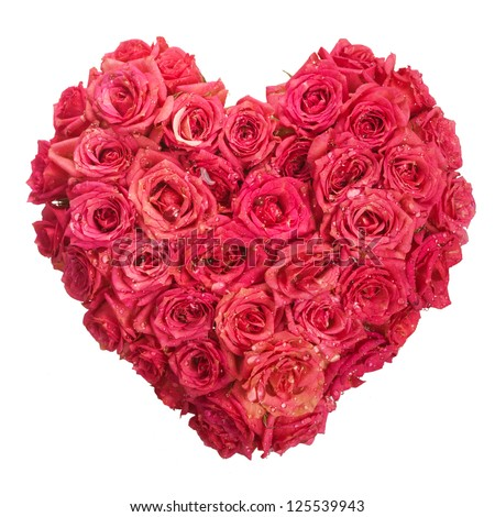 Rose Flowers Heart with water drops on white. Valentine. Love - stock photo