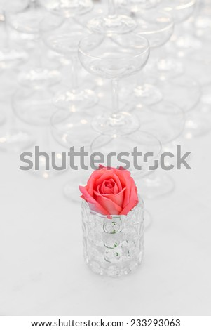 Rose for decorate dining table in wedding ceremony - stock photo