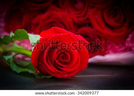Rose fresh read color and beautiful on the marble table - stock photo