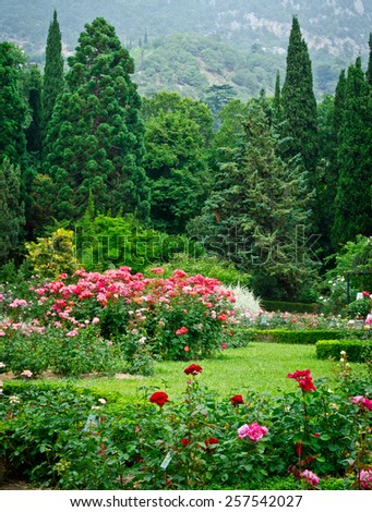 Rose Garden - stock photo