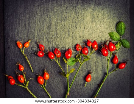 rose hips berries , toned - stock photo