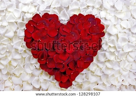 Rose Petals Heart. Red Petals Heart on White Rose Petals. Valentine's Day Theme. Occasions Photo Collection. - stock photo