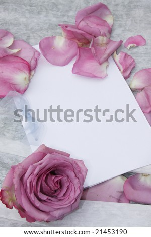 Rose petals on wedding RSVP - stock photo