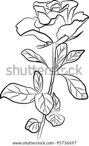 rose silhouette - freehand on a white background - stock photo