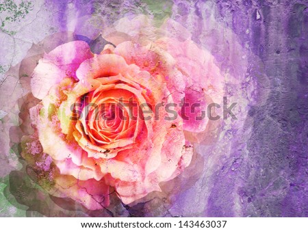 rose - styled picture with patina texture - stock photo