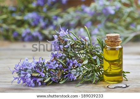 Rosemary essential oil in a small glass vial and plant with flowers on a wooden background - stock photo