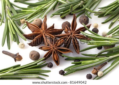 Rosemary, peppercorn, cloves and anise stars close-up on white background - stock photo
