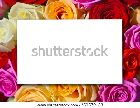 Roses bouquet and paper card - floral background - stock photo