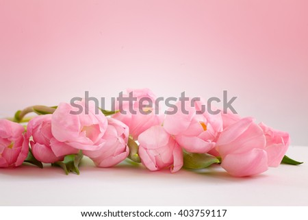 Roses bouquet on pink background - stock photo