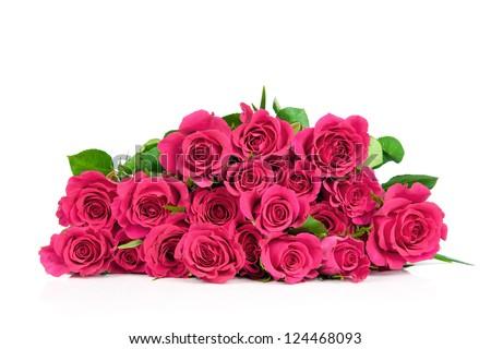 Roses isolated on white background - stock photo