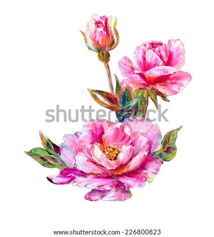 Roses isolated on white, oil painting on canvas - stock photo
