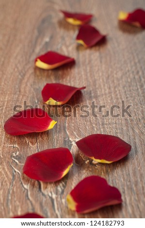 roses petals on wooden board - stock photo