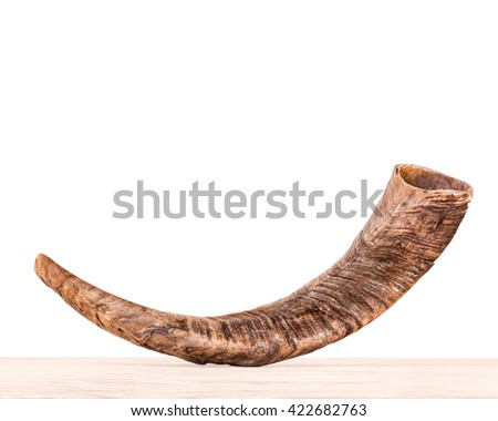 Rosh Hashana holiday shofar on light color wood grain surface, isolated on white background. Side view of textured ram's horn. Jewish New Year religious object. Copy space.  - stock photo