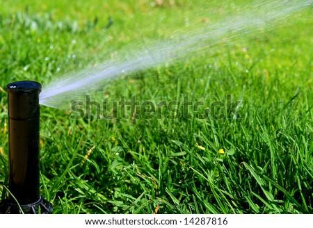 Rotating sprinkler over lawn - stock photo