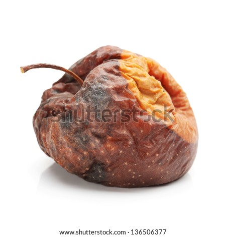 Rotten apple isolated on white background - stock photo