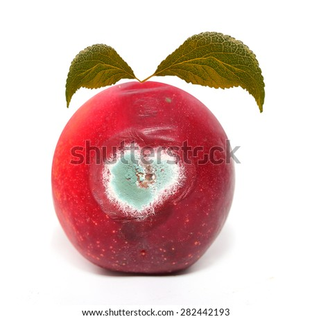Rotten peach on a white background. - stock photo