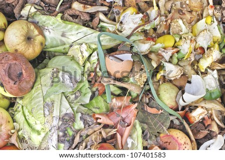 Rotting apples and kitchen waste on a compost heap - stock photo