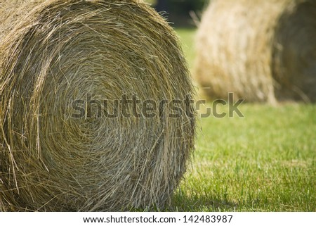 Round bail of hay in a field. - stock photo