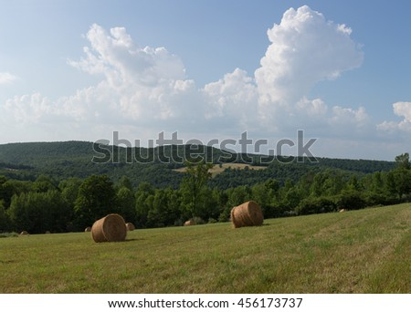 Round hay bales in a field surrounded by forest with a background of sky with puffy white clouds - stock photo