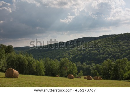 Round hay bales in a field surrounded by forest with a background of stormy sky - stock photo