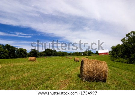 Round hay bales wait to be picked up in the fields above Seneca Lake in western New York. - stock photo