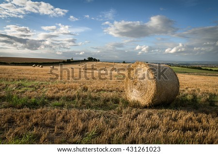 Round Straw Bales in Field of Harvested Barley, Ryedale,North Yorkshire, England, - stock photo