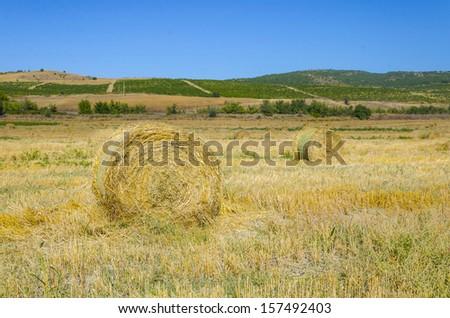 Round Straw bales on farmland on blue cloudy sky - stock photo