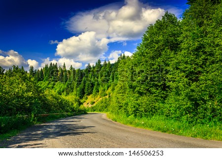 route through the mountains to the pine forest on a summer evening. sky with some clouds. horizontal - stock photo