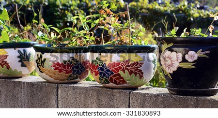 Row of old clay pots of flowers - stock photo