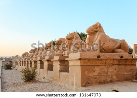row of ram-headed sphinxes in karnak temple, luxor, egypt - stock photo