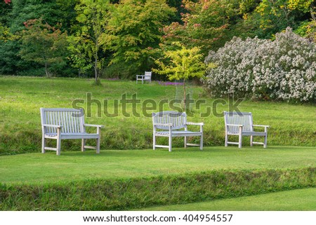 Row of wooden benches with attractive trees in the background - stock photo