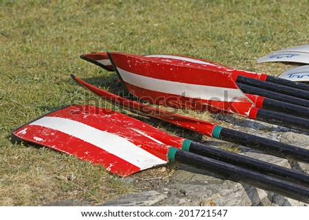 Rowing blades on the grass - stock photo