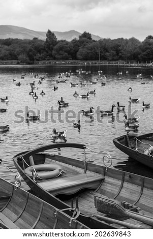 Rowing boats in Lake District near Windermere, England. - stock photo