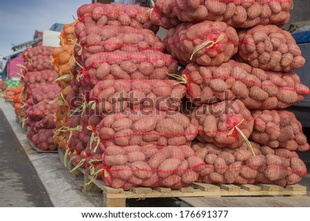 Rows and rows of potatoes in the bags at farmers market - stock photo