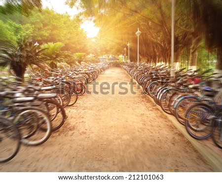 rows of bicycles on a school campus, china - stock photo