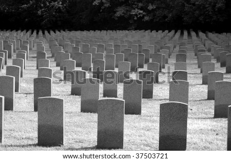Rows of tombstones from the war - stock photo