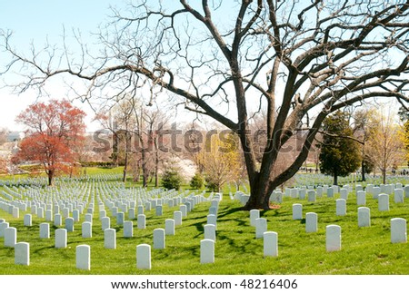 rows of white headstones at Arlington National Cemetery - stock photo