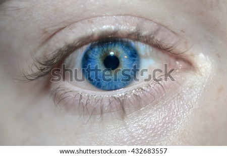 Royal Blue Eye - stock photo