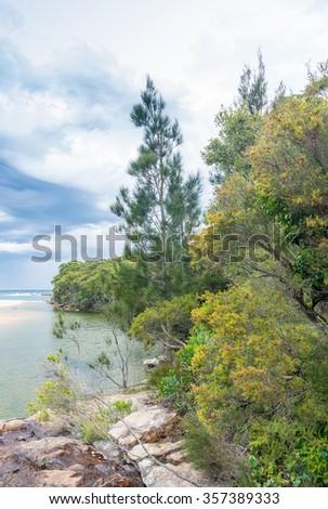 Royal National Park landscape near Sydney , New South Wales, Australia. - stock photo