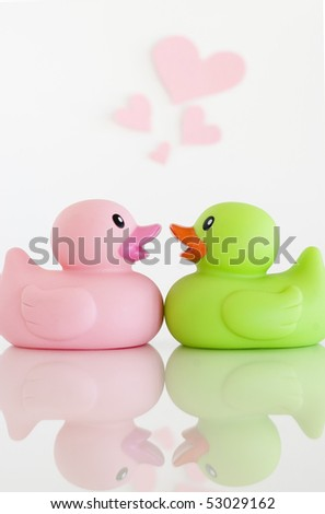 Rubber Ducks in Love - stock photo