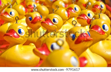 rubber ducky you are the one or two or few hundred - stock photo