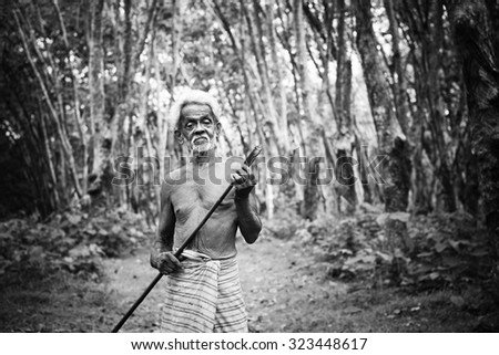 Rubber Plantation Worker Growth Green Occupation Concept - stock photo
