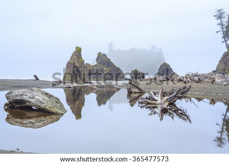 Ruby Beach, Olympic National Park in the U.S. state of Washington - stock photo