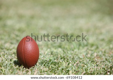 rugby ball in the field - stock photo