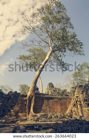 Ruin of Wall in Temple of Angkor, Cambodia - stock photo